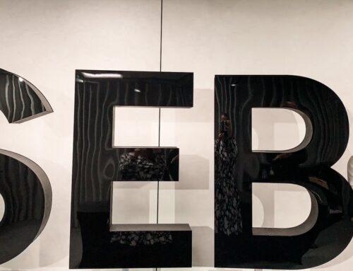 CASE STUDY – ettevõtte saadikute arenguprogramm SEB panga näitel